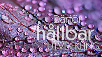 https://huaros.se//wp-content/uploads/2017/10/darfor-hallbar-utveckling_small_c.jpg
