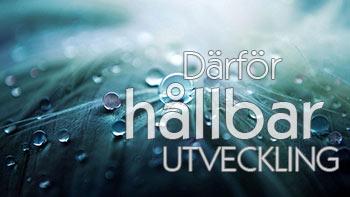 https://huaros.se//wp-content/uploads/2017/10/darfor-hallbar-utveckling_small_d.jpg