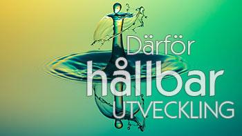 https://huaros.se//wp-content/uploads/2017/10/darfor-hallbar-utveckling_small_f.jpg