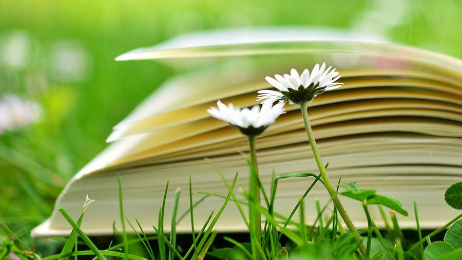 Kurser, workshops och utbildningar inom miljö, arbetsmiljö, kvalitetsarbete och hållbar utveckling.