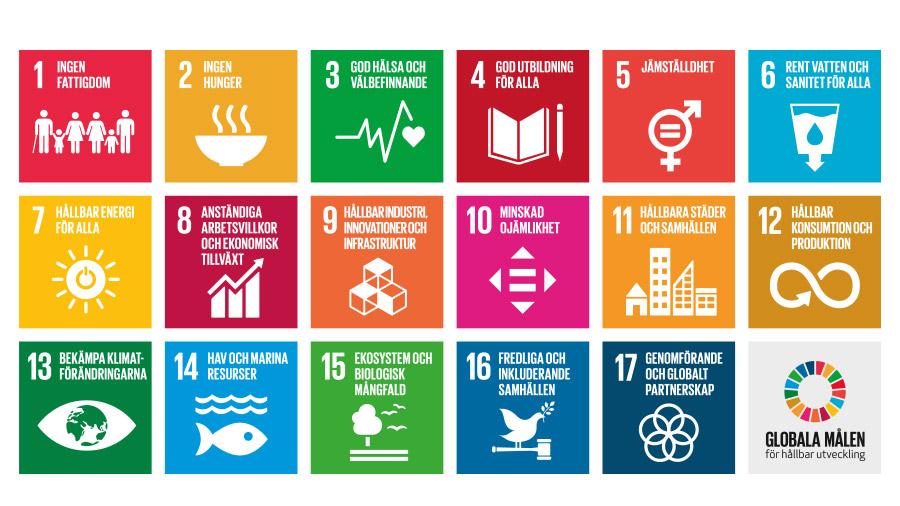 Vi hjälper er att säkerställa att ni arbetar i enlighet med Agenda 2030 och de Globla målen.